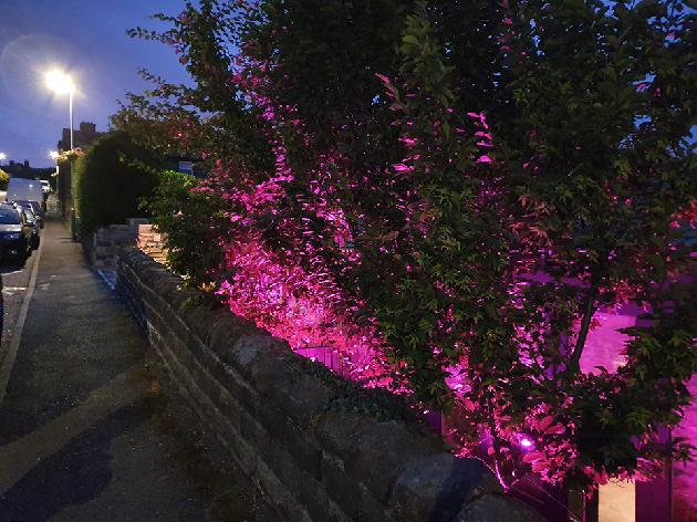 Colour changing LED garden lighting